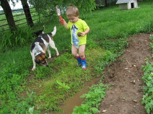 Nephew + Garden + Beagle - Pants + Mud
